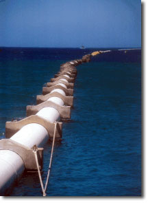 "55"" Pipeline at NELHA on the Big Island of Hawaii"