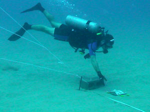 nearshore_dive_survey